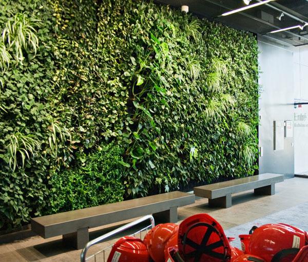 Going Green Plant Wall  Interior Design Inspiration