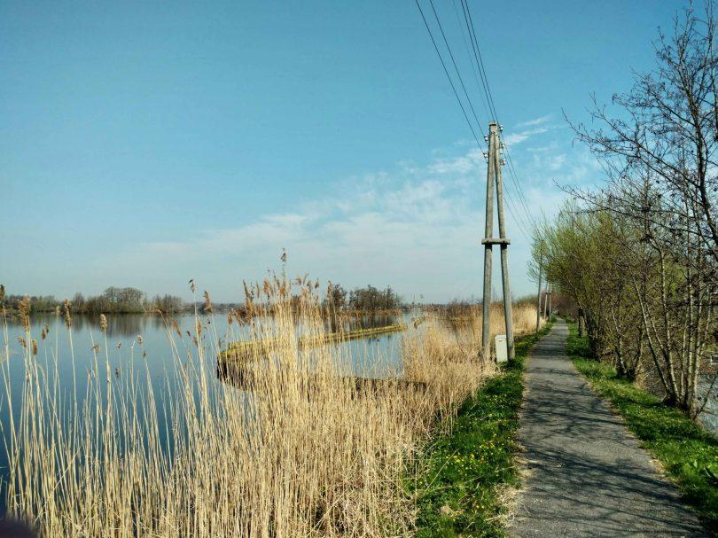 Elektriciteit_boven_de_grond_reeuwijkse_plassen