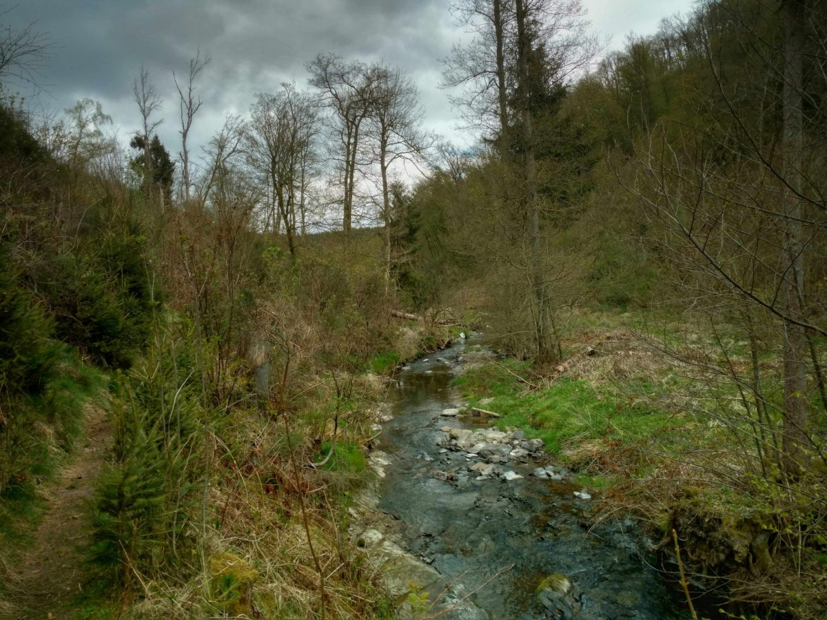 Ardennen_gr57_wandelen