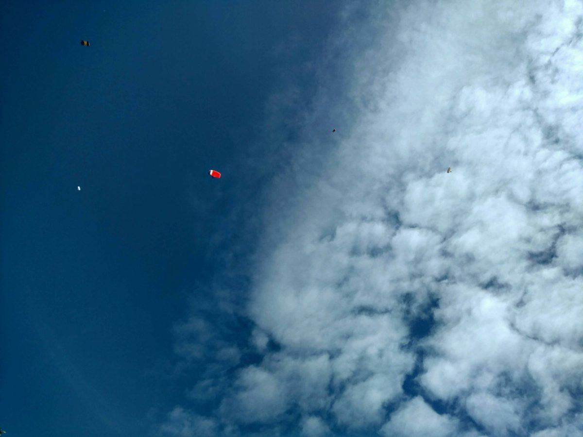 Skydiven_schweighofen