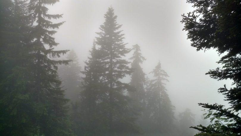BLOG | Mud and Mist on the Jahorina Trailrun Track | Romanija mountain BOSNIA AND HERZEGONIA