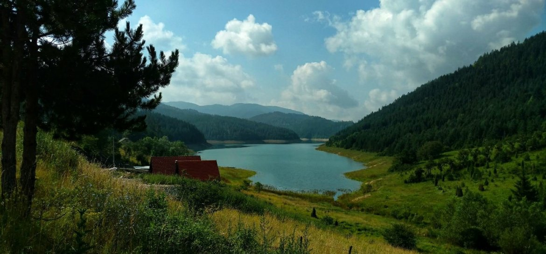 Zaovine jezero, Tara National Park