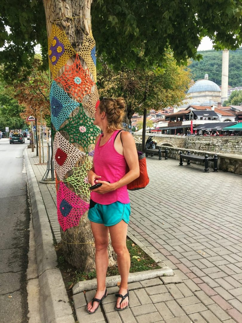 Sightseeing Prizren | tree art