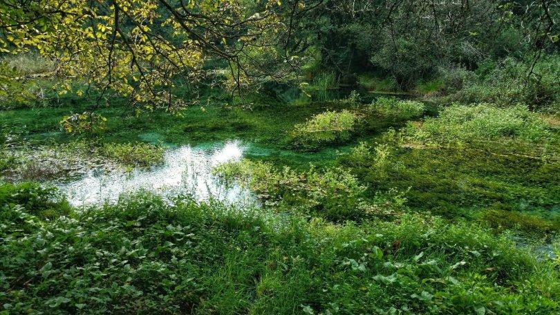 Sightseeing Ohrid | Black Drin