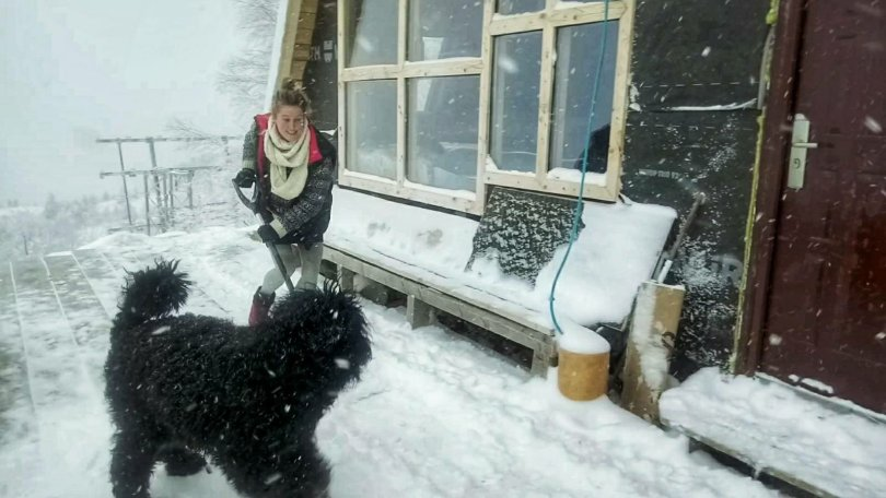 Snow shovelling with Dexter