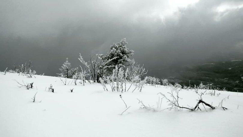 Black and white Mountain