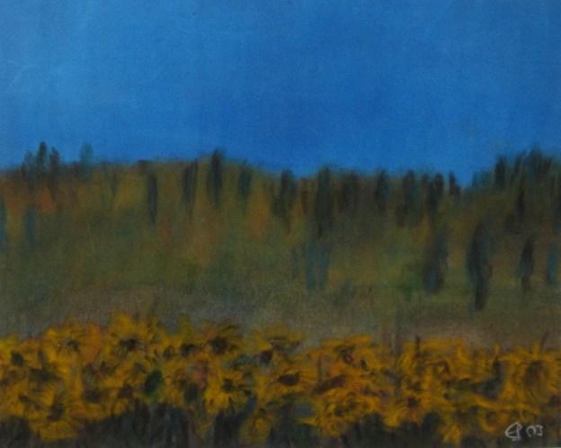 Sonnenblumenfeld II, 2003, mit Passepartout und Rahmen, 40 x 50 cm