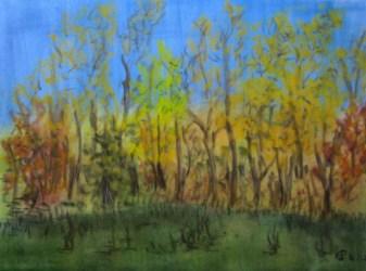 Golderner Herbst , 2011, Weichpastelkreide, mit Passepartout und Rahmen 40 x 50 cm