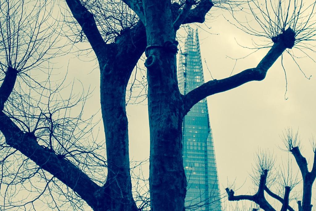 The Shard | London
