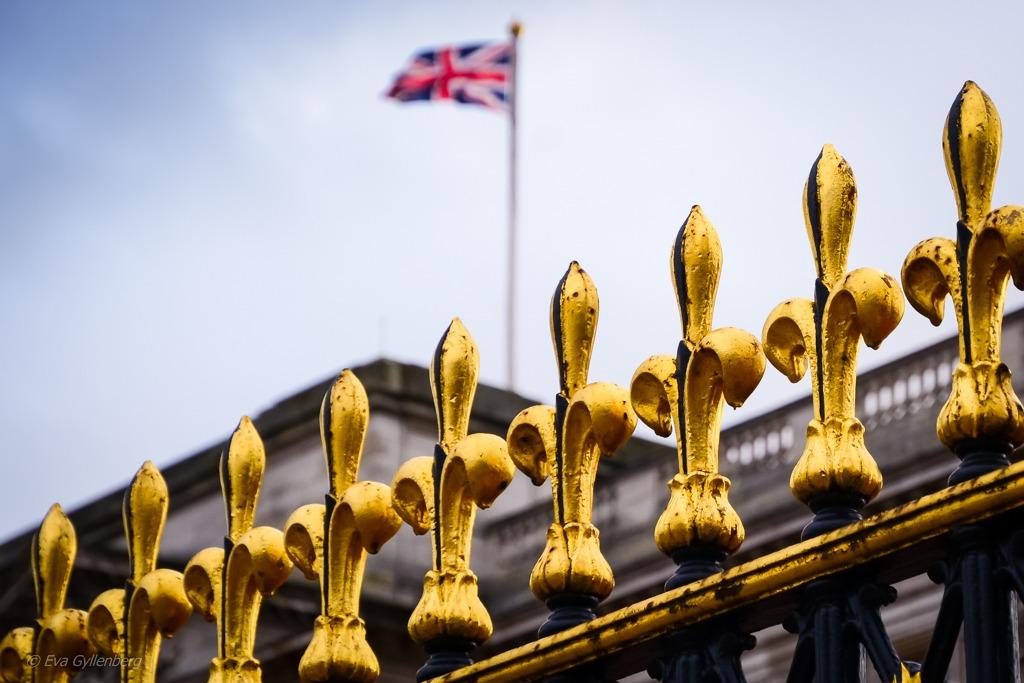 Buckingham palace | London