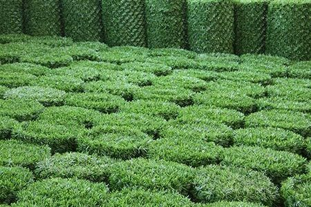 rolled grass fence
