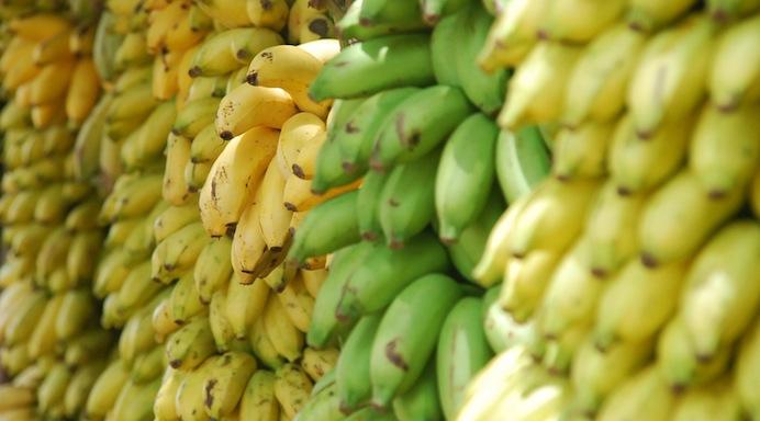 percezione dei colori - banane