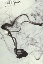 teoria del caos Frank Stella