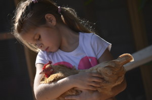Young-Girl-Holding-A-Chicken-000065485389_Large
