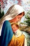 Hay algunos que piensan que los católicos «adoramos» a María ¿Es eso cierto?: por  Aci digital.