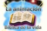 La animación bíblica de vida pastoral, la cuña para la evangelización.