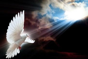 Unidos  con todo el corazón oremos por la elección de  nuestro nuevo   Papa y por todos los Cardenales  para que dóciles a las inspiraciones del Espíritu Santo elijan  al  que nuestro Padre Celestial   ha elegido.