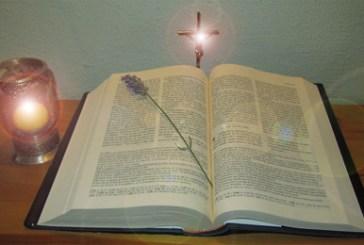 Lectios 28 y 29: Luz entre sombras y el nuevo testamento.