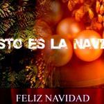 El verdadero sentido de la navidad. Hno. Salvador Gómez Yáñez.