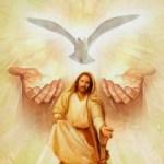 """""""Creo en el Espíritu santo Señor y dador de vida."""""""