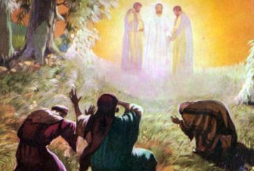 Urgencia de salir de la tibieza y ser transformados por Jesús Mt, 17, 1-12.