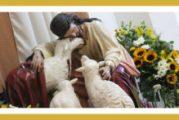 Evangelio San Juan 10,22-30. Martes 27 de Abril de 2021.