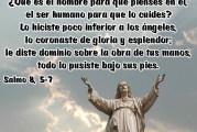 Salmo 8,2.5-9. Jueves 8 de abril de 2021.