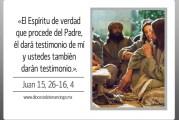 Evangelio San Juan 15,26-16,4. Lunes 10 de Mayo de 2021.