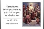 Evangelio San Juan 16,16-20. Jueves 13 de Mayo de 2021. Nuestra Señora de Fátima.