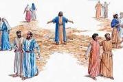 Evangelio San Marcos 6,7-13. Domingo 11 de Julio de 2021.
