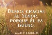 Salmo 135, 1.23-24. 10-15. Sábado 17 de Julio de 2021.  Misa de Santa María Virgen.