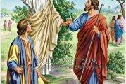 Evangelio San Lucas 9,1-6. Miércoles 22 de Septiembre de 2021.