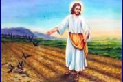 Evangelio San Lucas 8,4-15. Sábado 18 de Septiembre de 2021. Misa Votiva de Santa María Reina de los Apóstoles.