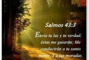 Salmo 42, 1-4. Viernes 24 de Septiembre de 2021. Nuestra Señora de la Merced.
