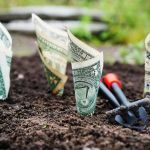 Planted money