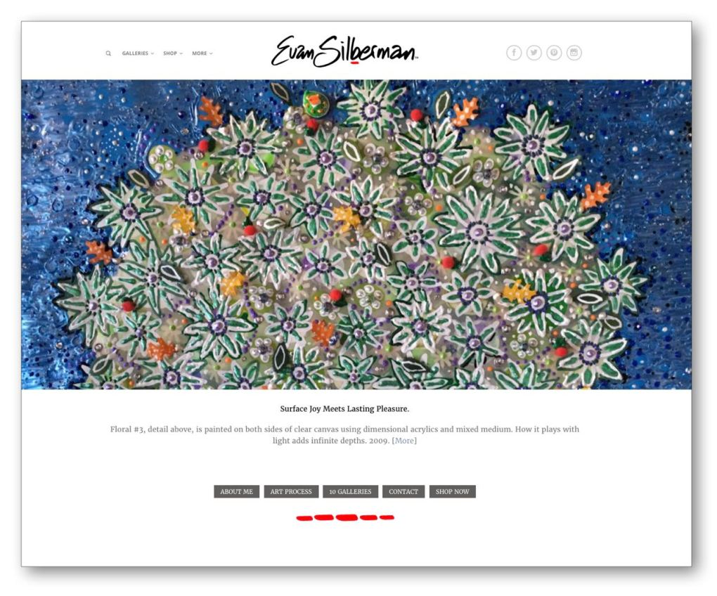 Homepage of website - Evan Silberman.NYC -