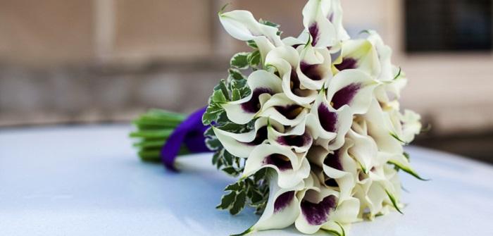 Brautstrau mit Calla Ideen fr eine der sinnlichsten Blumen