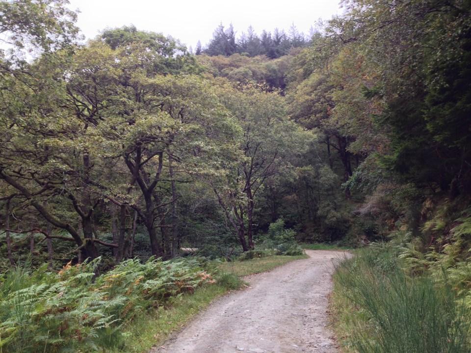 West Highland Way - Trail