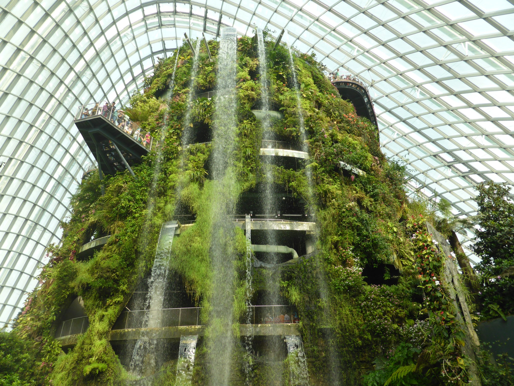 Cloud Forest Singapour