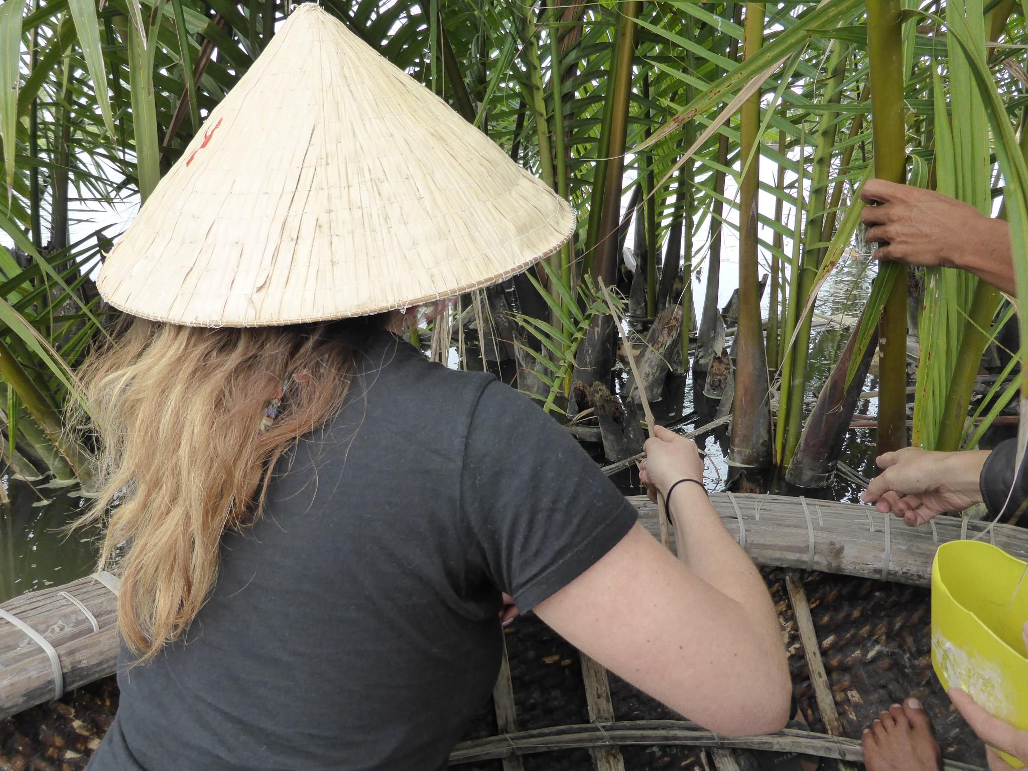 Crabe Cam Thanh Hoi An