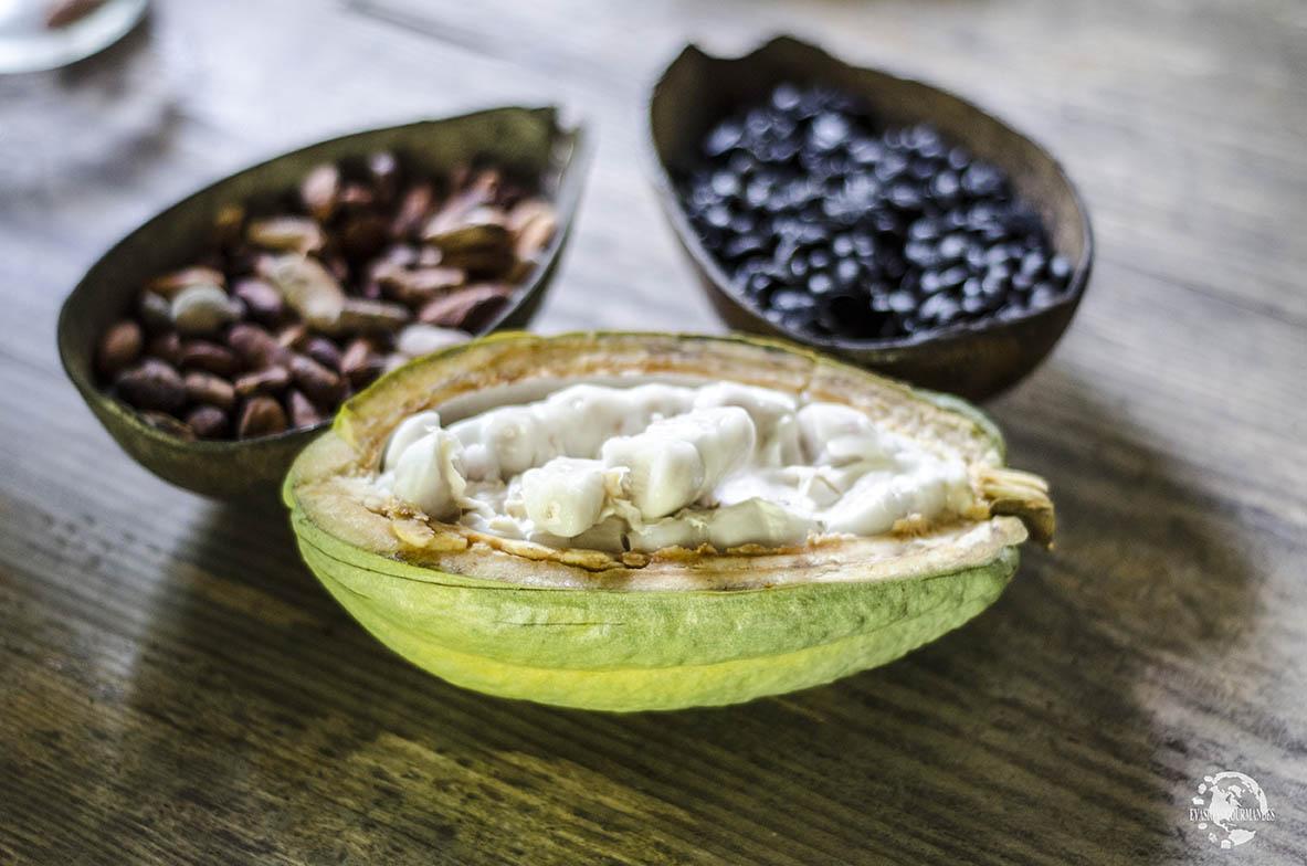 Cacao dominicain bio