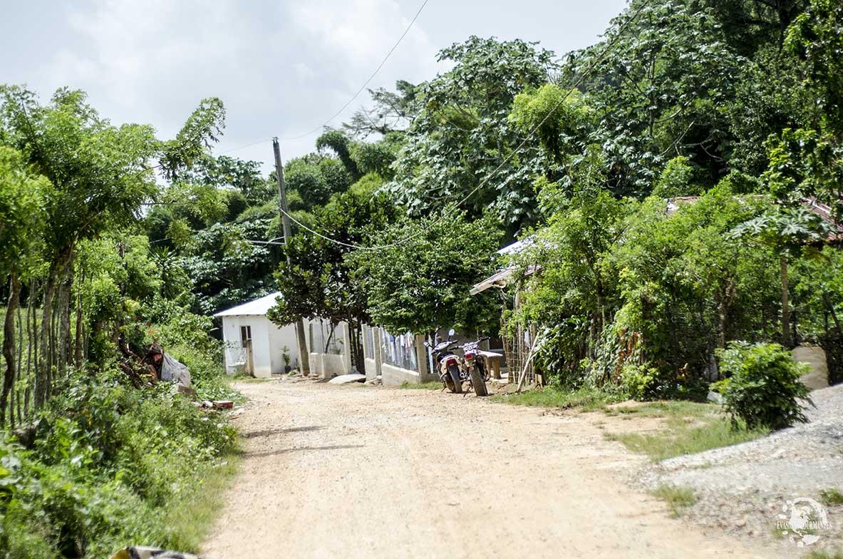 Route du Café Las Terrena