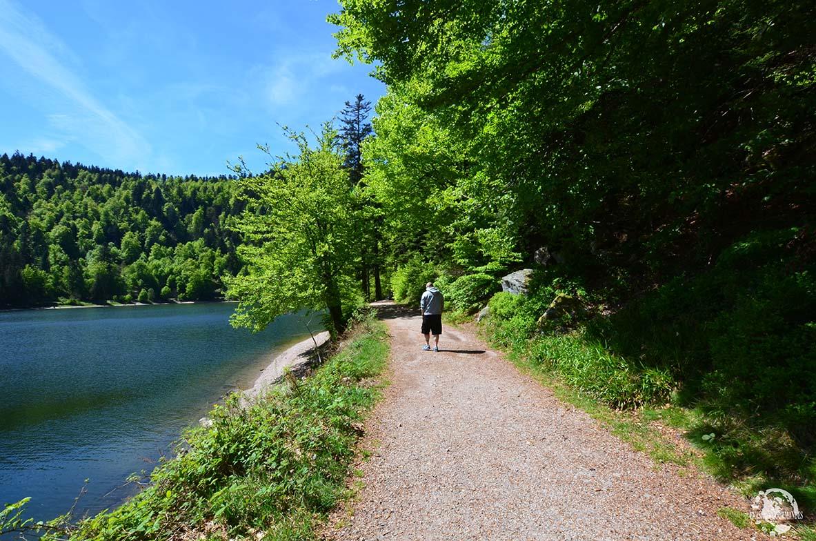 Lac des Corbeaux La Bresse