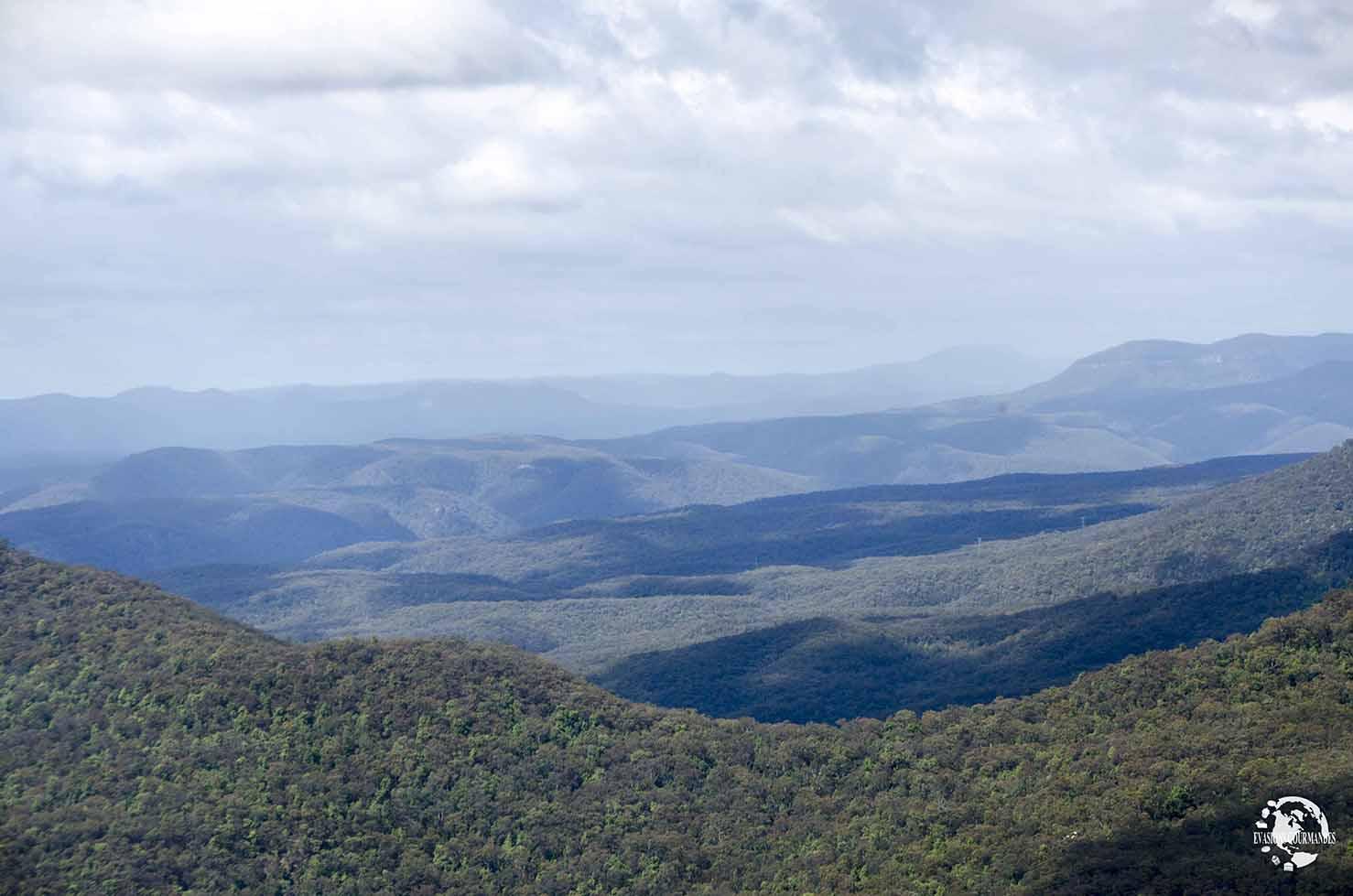 visiter les Blue Mountains en 1 journée