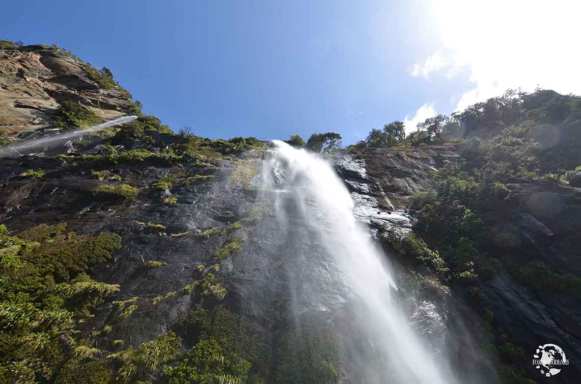 croisière à Milford Sound