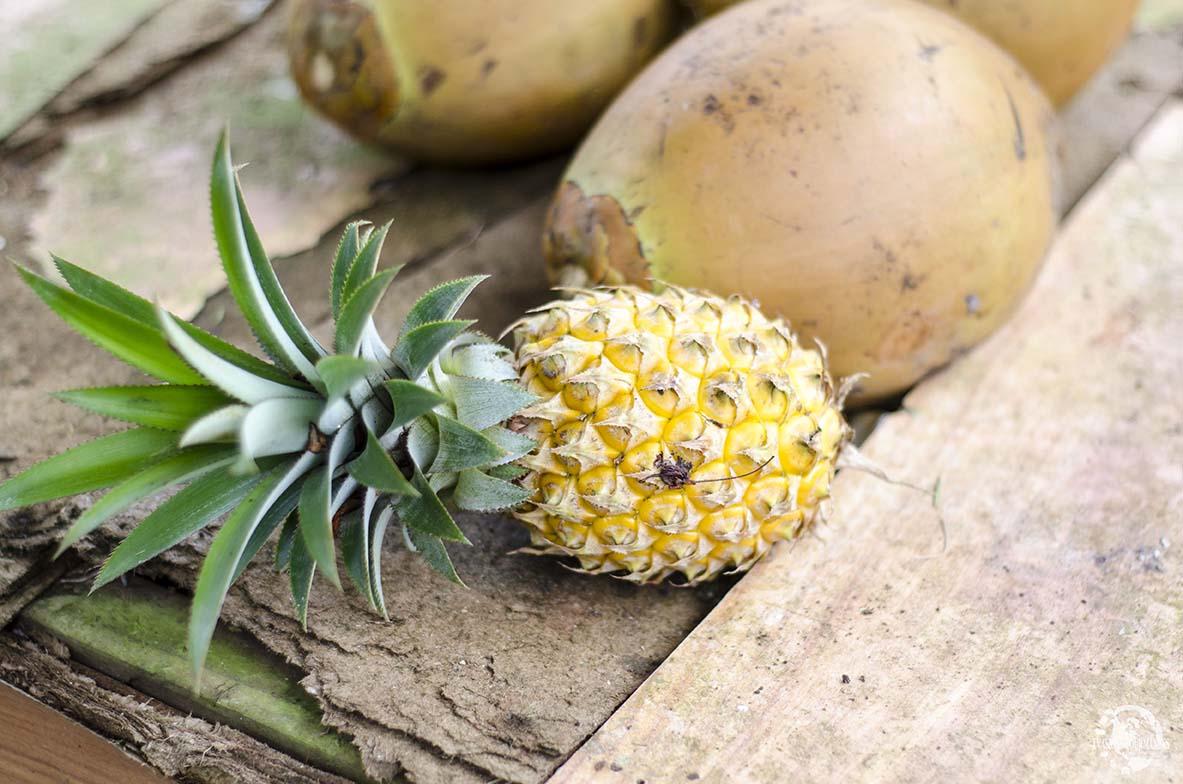 Ananas Moorea