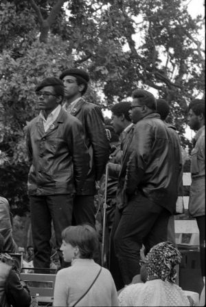 Black-Panthers-016-11