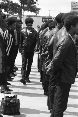 Black-Panthers-016-34