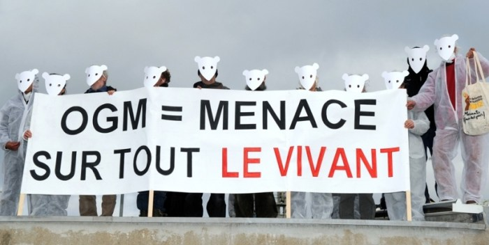 anti-ogm-sur-un-site-de-monsanto