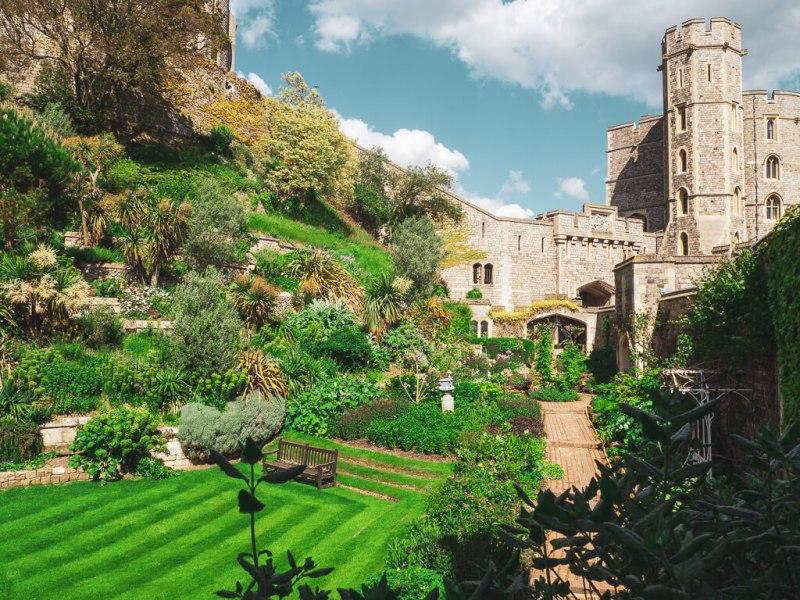 Windsorin linnan puutarha